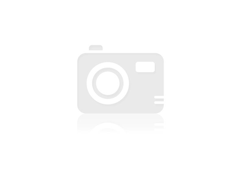 Barfgold Kalbsbrustbeinknochen