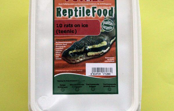 Futterratten für Reptilien
